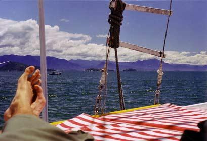 Boat trip in the bay